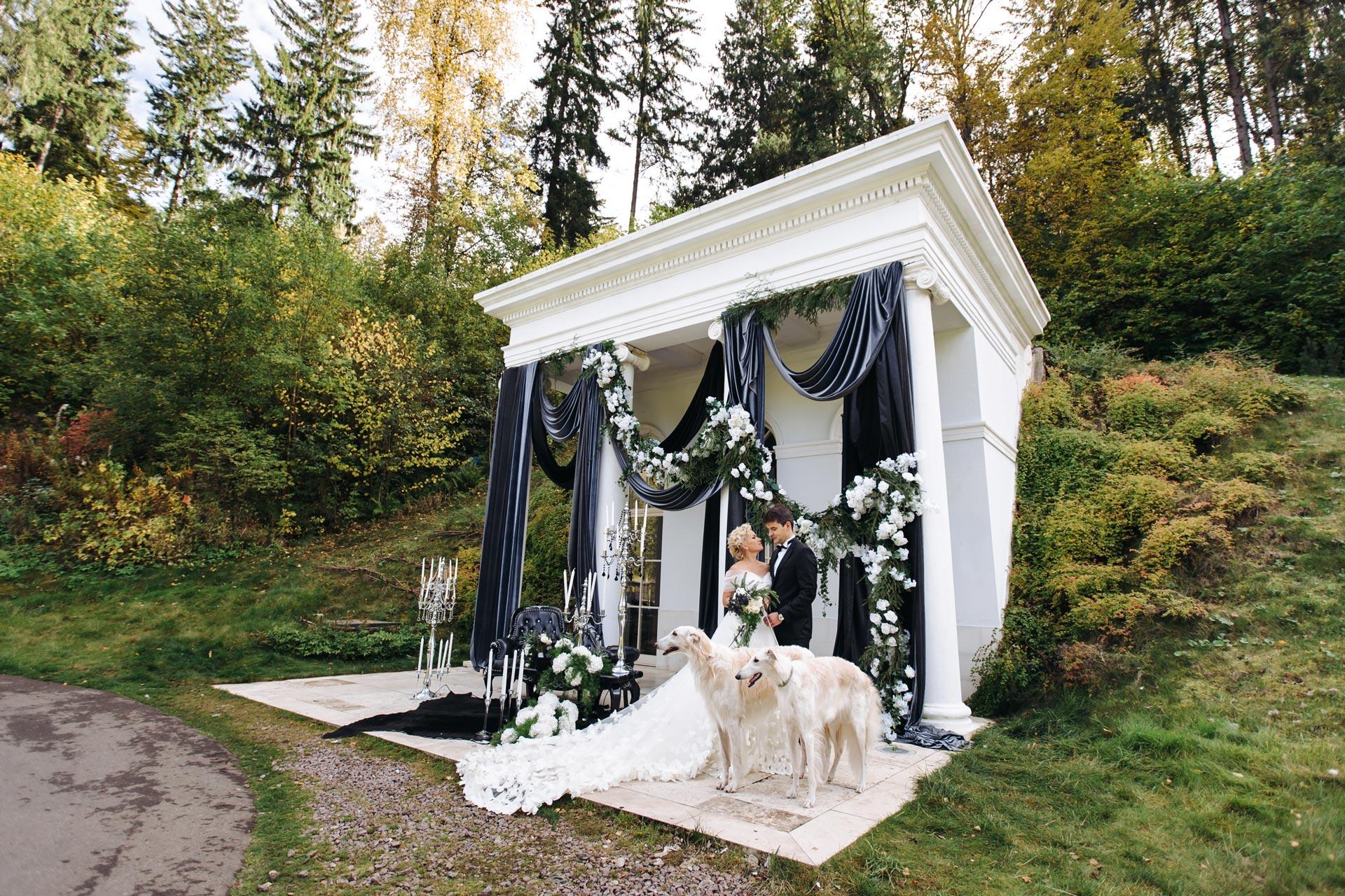 Магический дом. Свадьба Владимира и Ирины фото 9