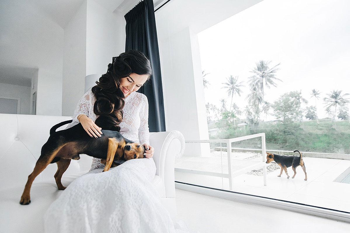 свадебная фотосессия с животными фото 12