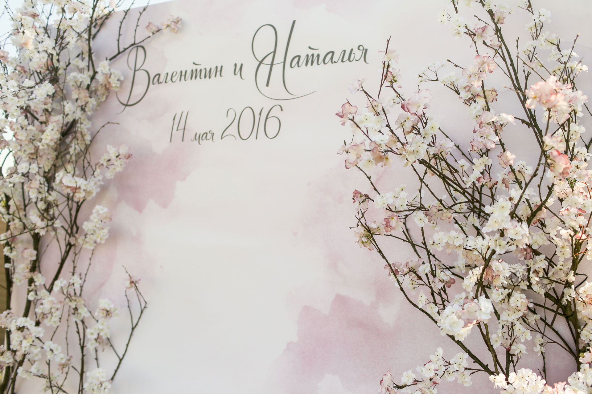 Вишневый сад. Свадьба Валентина Кротова и Натальи Ходуновой фото 5