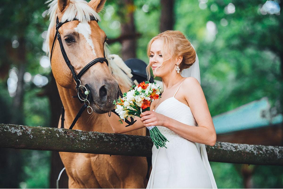свадебная фотосессия с животными фото 18
