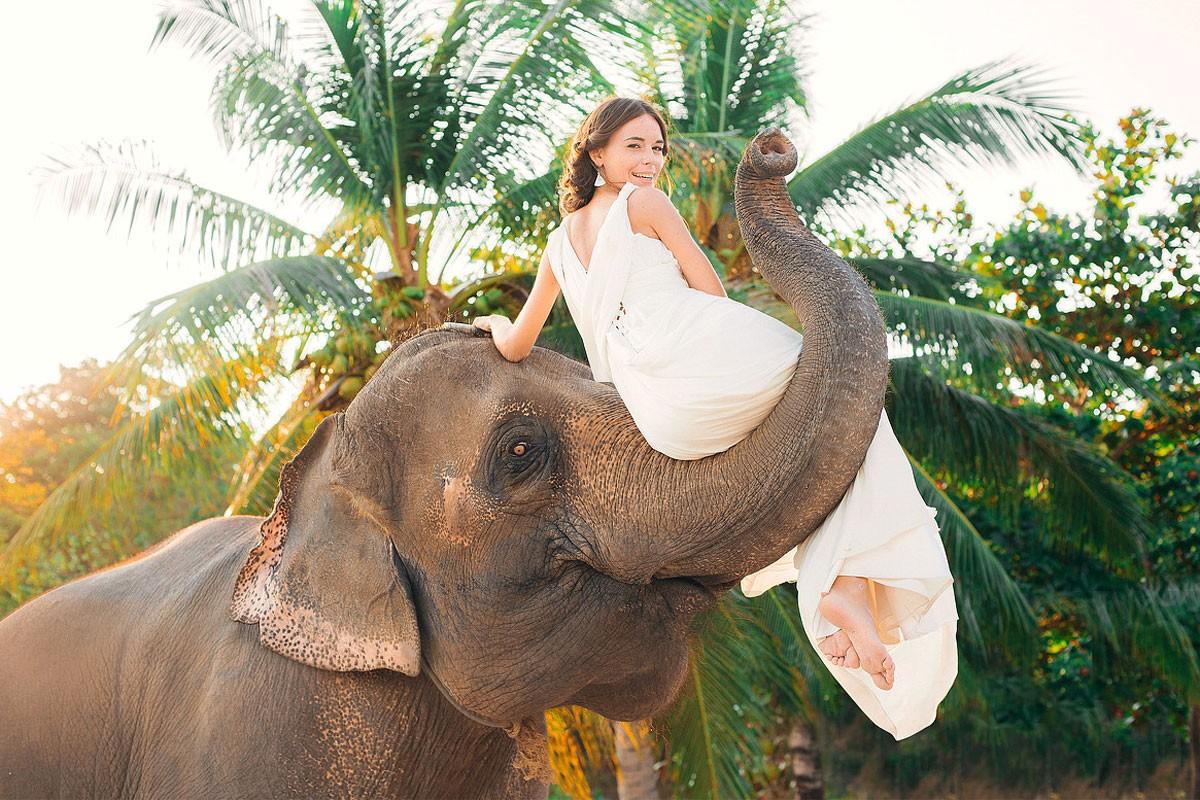 свадебная фотосессия с животными фото 19